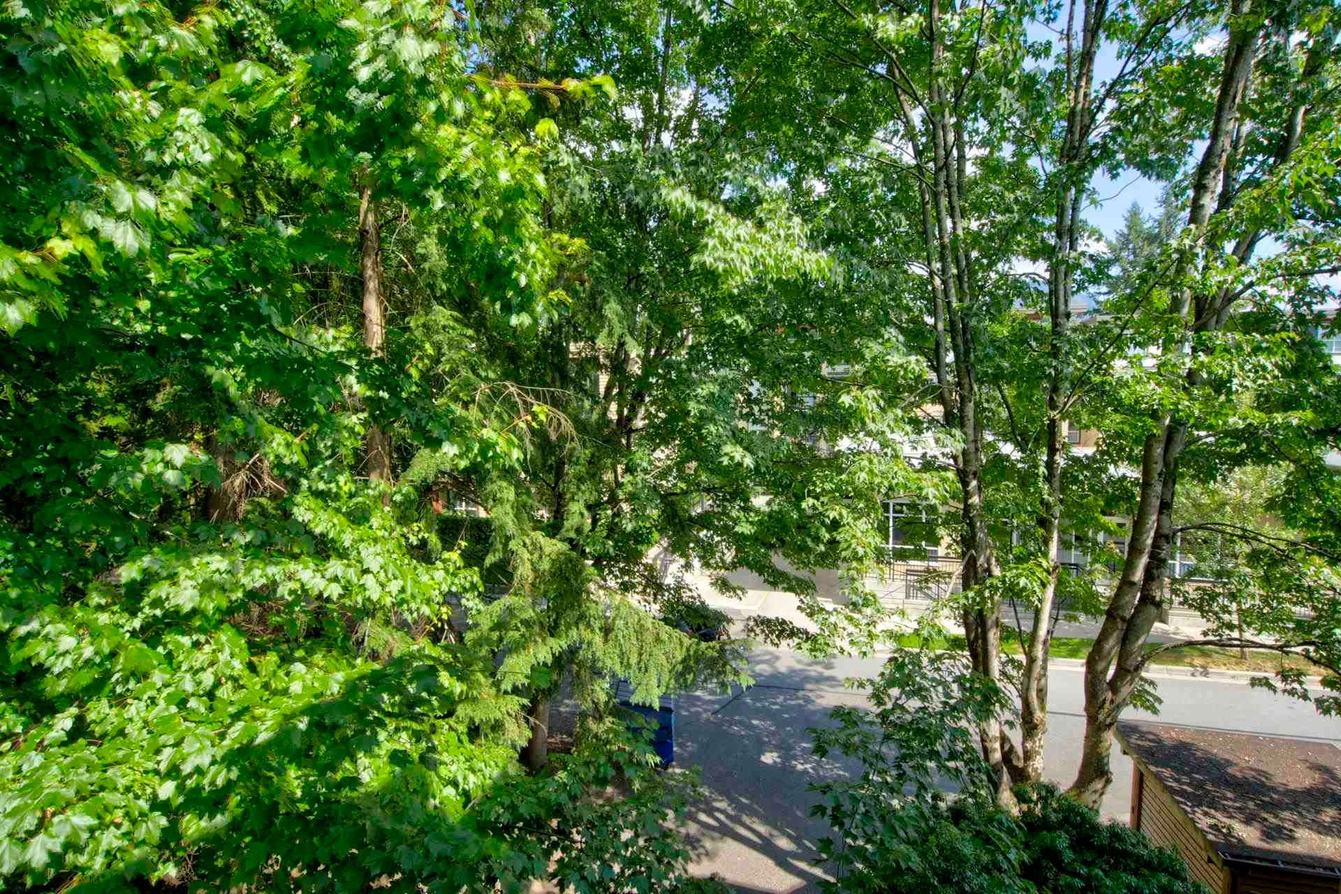 301 3187 MOUNTAIN HIGHWAY - Lynn Valley Apartment/Condo for sale, 2 Bedrooms (R2603681) - #21