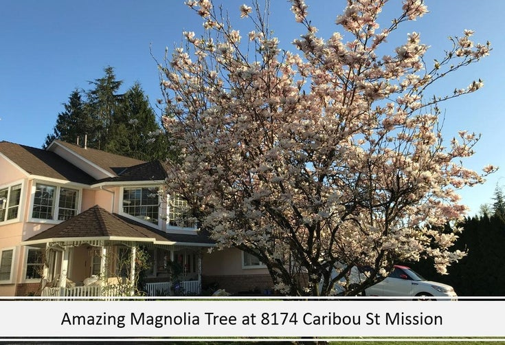 8174 CARIBOU STREET - Mission BC House/Single Family for sale, 6 Bedrooms (R2620451)