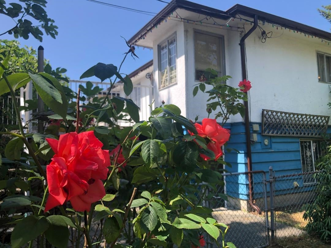 3296 TURNER STREET - Renfrew VE House/Single Family for sale, 4 Bedrooms (R2621858) - #1