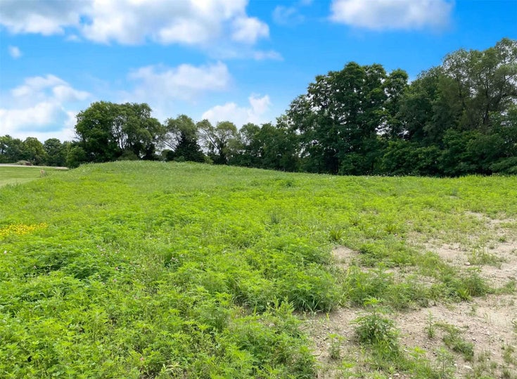 55 Philson Crt - Cookstown Vacant Land for sale(N5318256)