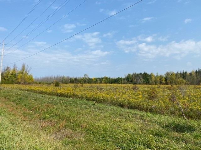 0 Weirs Sdrd - Pefferlaw Vacant Land for sale(N5370101)