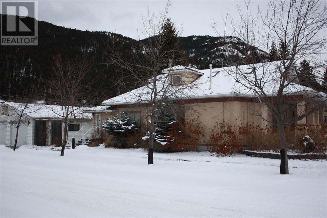 13407 20 Avenue - Blairmore House for sale, 4 Bedrooms (ld0185998) - #1