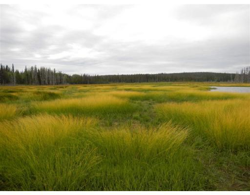 LOWER DEAN RIVER ROAD - Williams Lake for sale(R2367696)