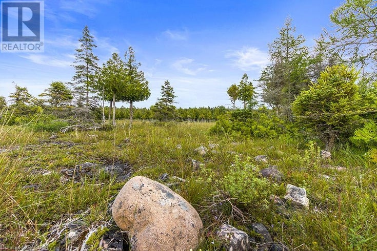 LOT 242 PEDWELL Drive - Tobermory for sale(40145314)